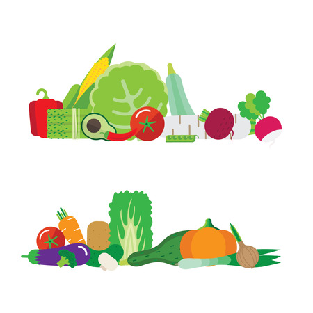 pumpkin tomato: Illustration with vegetables. There cabbage, pumpkin, cucumber, tomato, peppers, zucchini, mushrooms.