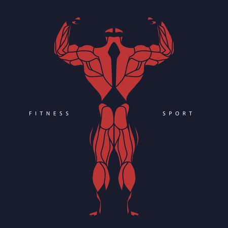Sport, fitness, muscle, bodybuilder, man, silhouette