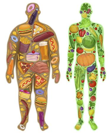 alimentacion sana: Humano, delgado, gordo. Nutrici�n, comida. Nuevo. ilustraci�n Vectores