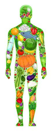 Gezond mensenvoedsel in het lichaam, vectorillustratie