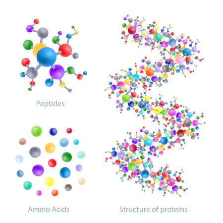 Estructura de proteínas, péptidos, aminoácidos, ilustración vectorial