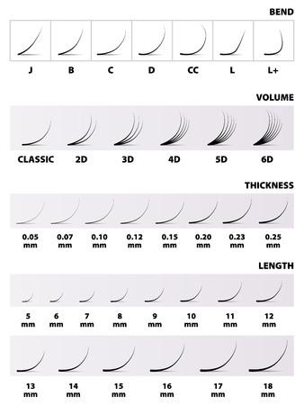 Extensions de cils, la table, le montant de la longueur de la courbe d'épaisseur, illustration vectorielle Vecteurs