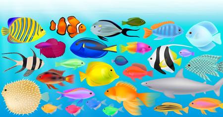 Aquarium, different fish, seascape, vector illustration