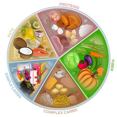 The circle of nutrition, food watercolor, diet. meat, vegetables, vector illustration