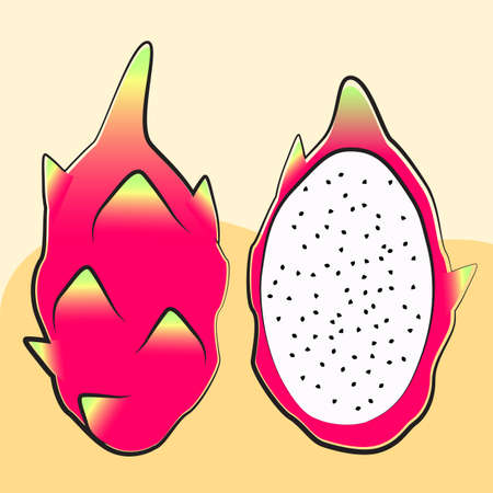 Tropical fruit, Pitaya, pitahaya, Dragon fruit, drawing background vector illustration