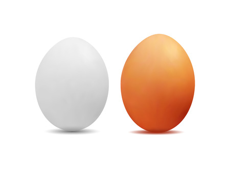 3D realistic image of yellow and white eggs.