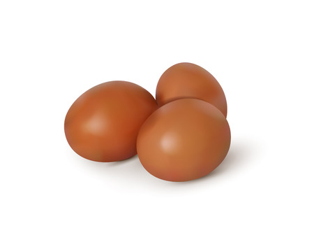 Realistic vector image of eggs.