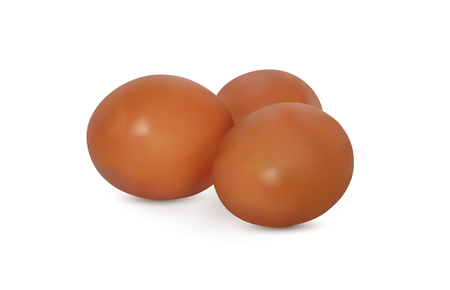 Realistic vector image of eggs. Vector Illustration