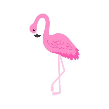 Flamingo or tropical birds illustration for party card. Summer exotic background. Vintage cute holiday set