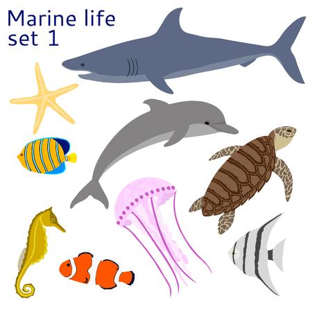 scalar: Marine life. Set of isolated objects.