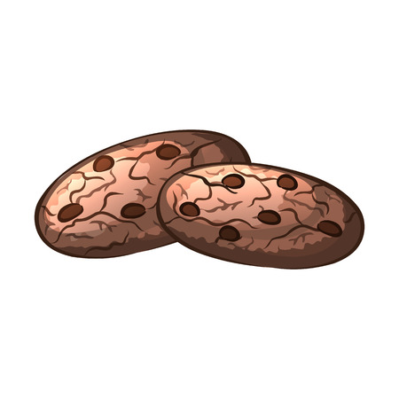 chocolate chip: Chocolate chip cookies with nuts. Isolated object on a white background. Vector illustration.