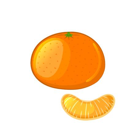 mandarin: Mandarin and tangerine slice. Isolated object on a white background. Cartoon icon. illustration. Illustration