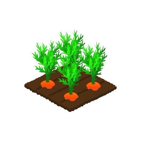 The bed of carrots icon. Illustration