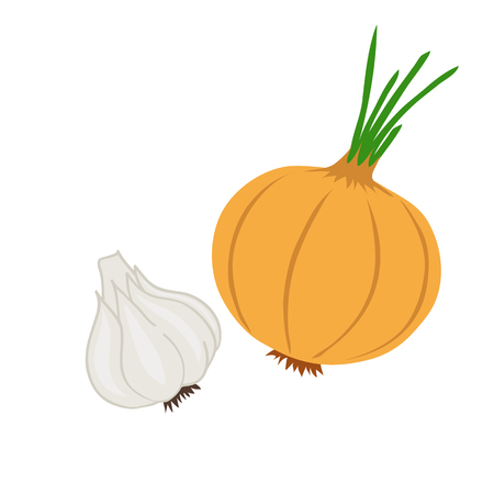 The onion and garlic. Isolated objects on white background. Vectores