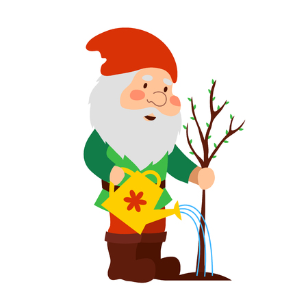 A garden gnome is watering the tree from the watering can. Cartoon old man.