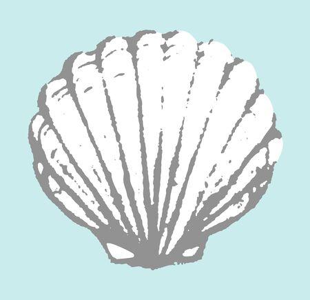 Seashell hand drawn. Vector illustration.