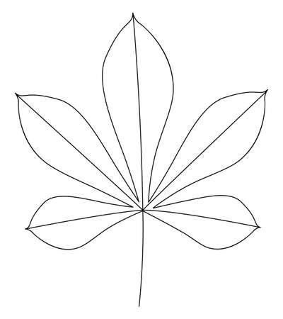Leaf of chestnut tree. Thin line art. Isolated on a white background. Vector illustration.