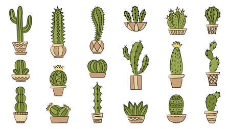 Set of cacti. Hand drawn style. Isolated objects on white background. Vector illustration.