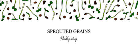 Hand drawn horizontal sprouted grains design. Healthy vegetarian and vegan food design for company logo, print, packages. Vector illustration