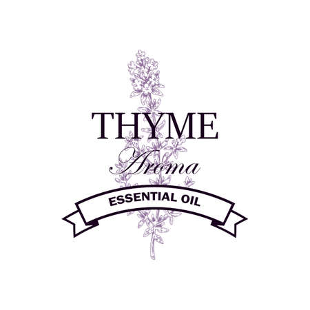 Thyme essential oil logo with hand drawn elements. Vector illustration in sketch style isolated on white background