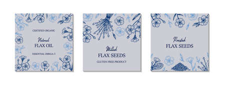Set of hand drawn flax frames. Vector illustration in sketch style for linen seeds and oil packaging 矢量图片