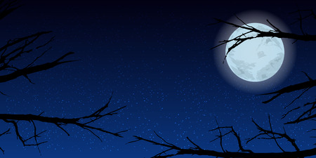 Sky moon trees night. Illustration. Use wallpaper for, the website, smart phone, tablet PC, printing etc