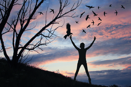 Concept of freedom. Girl on a sunset background lets the birds in the sky. Illustration for your design