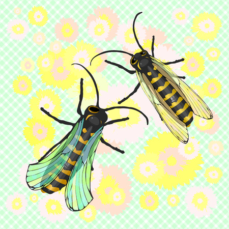 Two bees collect the pollen from the flower. The dance of bees around the bud. Garden of flowers. Vector illustration for your design.