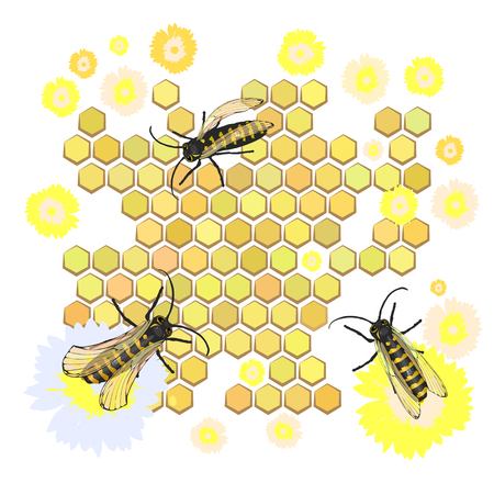 collect: Bees collect honey Vector illustration for your design. Illustration