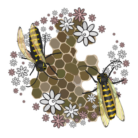 Bees collect honey. With transparent wings on a white background with honeycomb honeycombs and flowers. Vector illustration for your design. Illustration