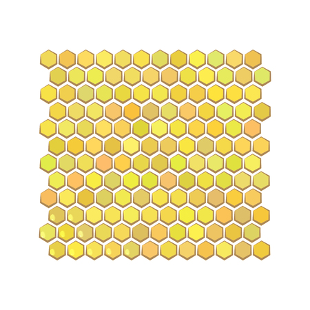 Honeycombs are honeycomb hexagonal. on a white background. Vector illustration for your design.