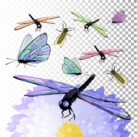 Dragonfly and butterfly on a flower. Symbol of summer. Illustration on isolated background. Vector for your design. Decoration for invitations, frames, websites, fabrics, printing, sublimation .