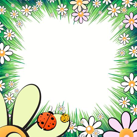 Fotolijst zomer. Vector illustratie voor uw ontwerp. Lieveheersbeestjes, insecten op het gras met madeliefjes. Vierkant vel oriëntatie