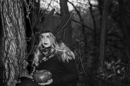 Halloween concept. witch in a dark forest is witching.with a pumpkin in the hands of a photo for your design