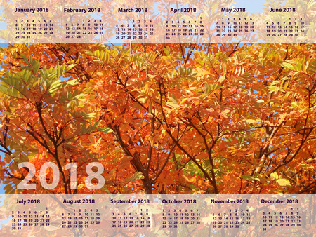 the calendar for 2018. nature autumn tree