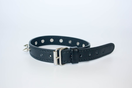 collar with spines. black with spines. with metal studs on the buckle. PHOTO FOR YOUR DAY.