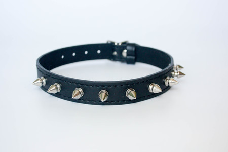 collar with spines. black with spines. with metal spikes on the clasp.