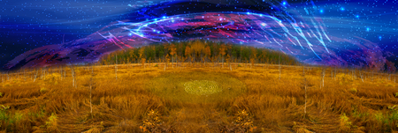 the swamp. in the steppe in autumn. Russia Siberia
