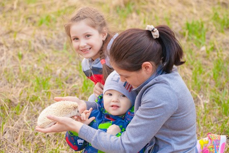 The concept of a happy family. Children play with a hedgehog. Mom walks with the babies.
