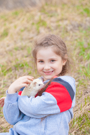 The concept that animals are mans best friends. Little girl holding a hedgehog. The child plays with a pet.