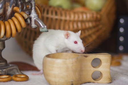 White rat with a cup on the table. Mouse with samovar. Russian folk style.