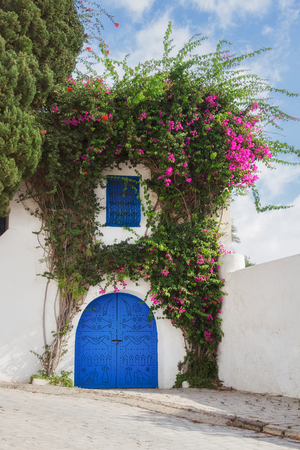 tunisie: Blue door in Tunis with grass and flowers on the fasade
