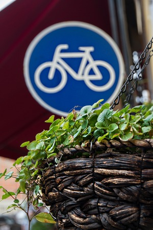 Pots with green plants and road sign on a street bike Stock Photo