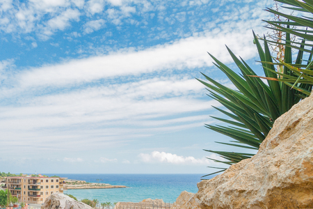 green palms and stones, coast Mediterranean sea on sunny day in Tarragona, Catalonia, Reklamní fotografie