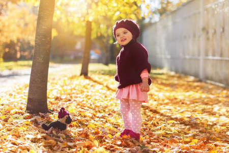 little girl Caucasian in red jersey and beret with bouquet of yellow maple leaves with toy dog and smiles on leaf fall street