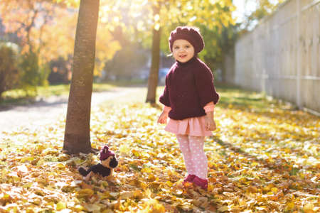little girl 3 years in red sweater and beret with bouquet of yellow maple leaves and smiles in park sunny autumn