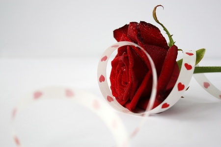 Red rose with a white tape with hearts photo