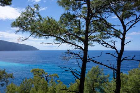 View of the Mediterranean Sea through the pine trees in Turkey Stock Photo