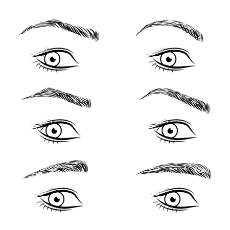 Set of different form eyebrows. Vector illustration.