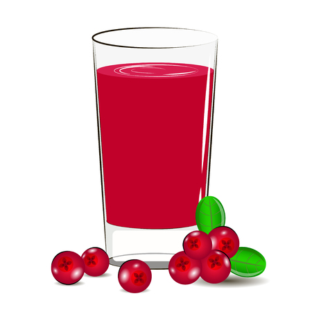 cranberry juice: Vector illustration of glass with cranberry juice and cranberry berry.